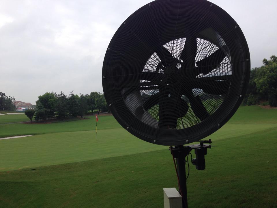 Electric fan 1